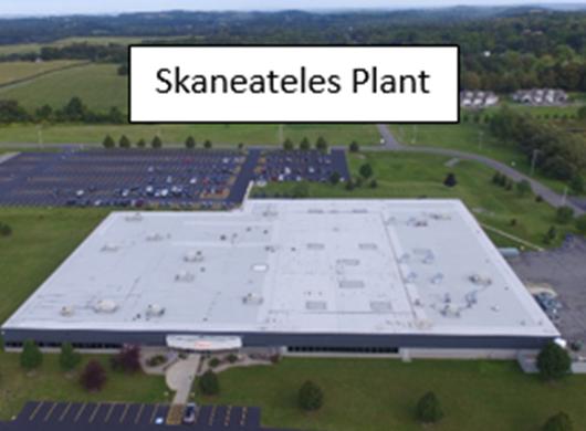 Skaneateles plant